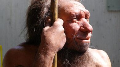 Photo of La dieta paleo: lo que dice la ciencia acerca de comer como lo hacían nuestros ancestros