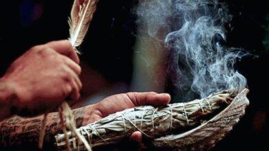 Photo of ¿Cómo armar un atado de hierbas para Sahumar?