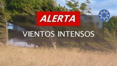 Photo of Alerta Meteorológica por fuertes vientos para la región