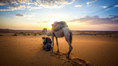 Photo of Descubrí los secretos de Marruecos