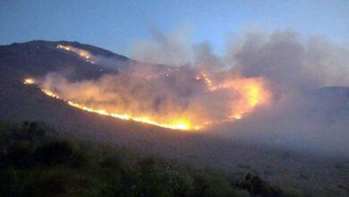 Photo of Se aprobó en Diputados el proyecto para proteger el ecosistema de incendios